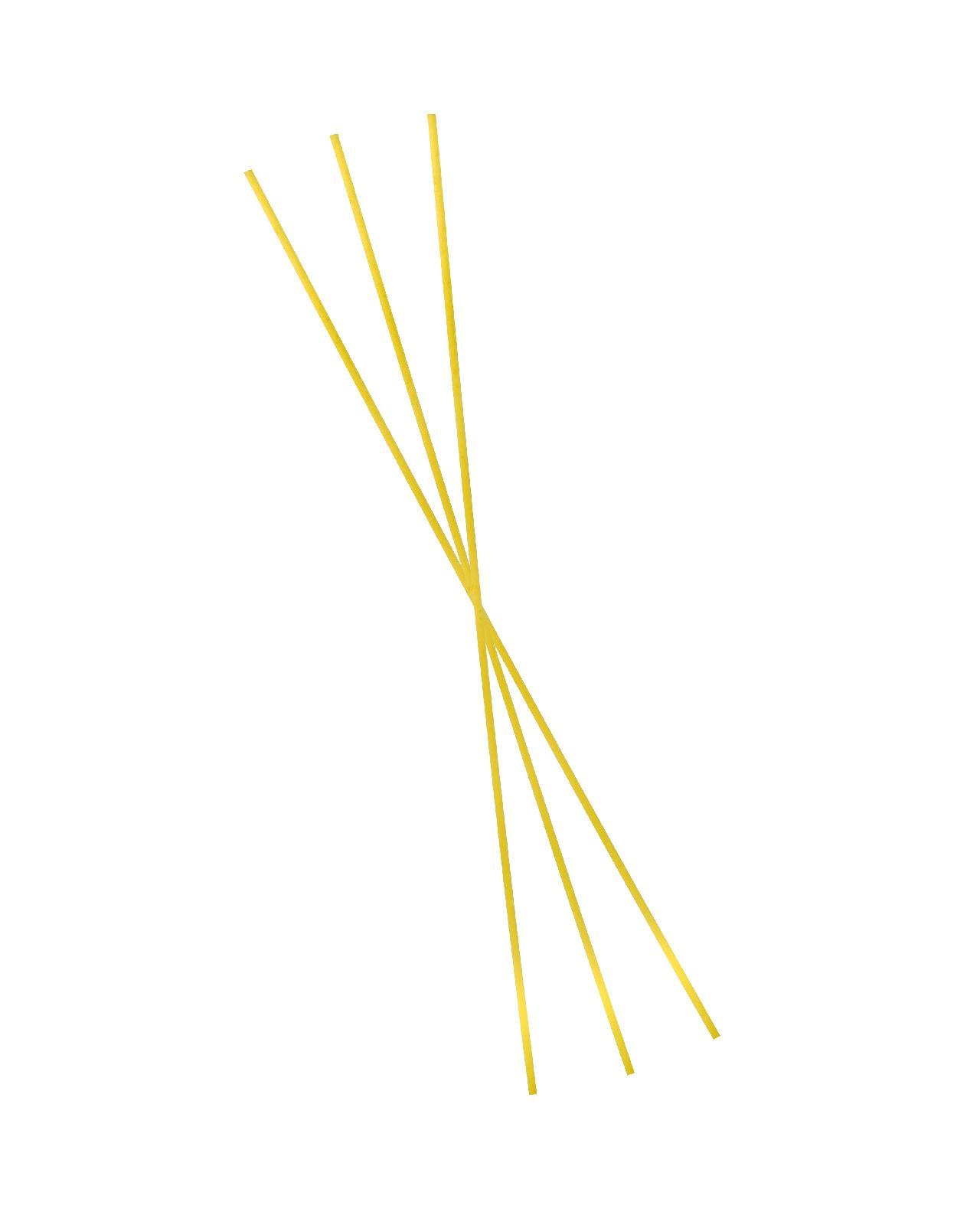 Spaghetti Bucati n° 205